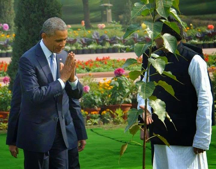 Obama trong cay bo de (3)