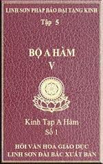 tn_a-ham-tap-5