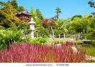 japanese-tea-garden-in-the-golden-gate-park-san-francisco-thumbnail