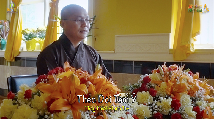 Thich Hanh Tue 296 Theo Doi Tam Y