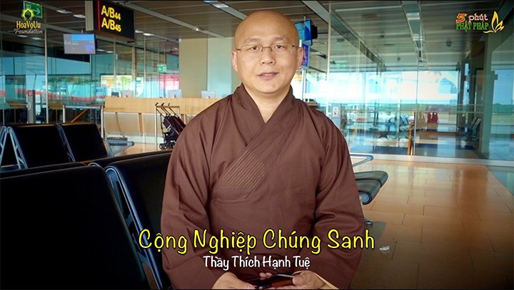 Thich Hanh Tue 330 Cong Nghiep Chung Sanh