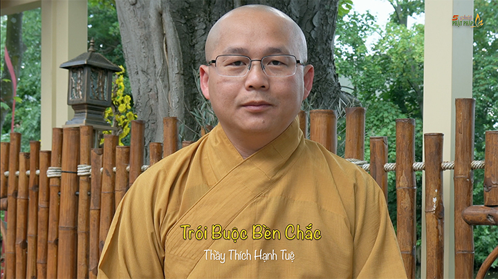 Thich Hanh Tue 592 Troi Buoc Ben Chac