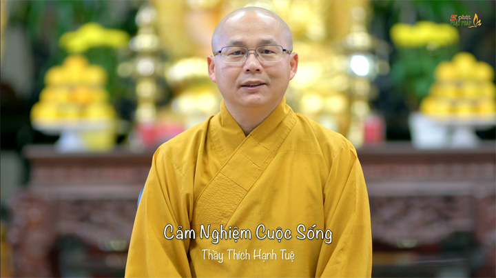 Thich Hanh Tue 649 Cam Nghiem Cuoc Song