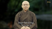 thich-hanh-tue-811-duyen-sinh-vo-nga