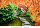 pond-and-path-of-the-japanese-garden-thumbnail