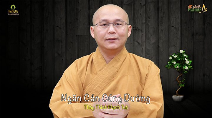 Thich Hanh Tue 389 Ngan Can Cung Duong