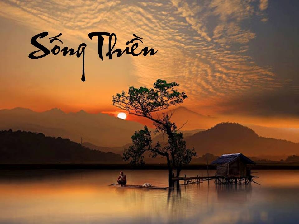 Image result for sống thiền