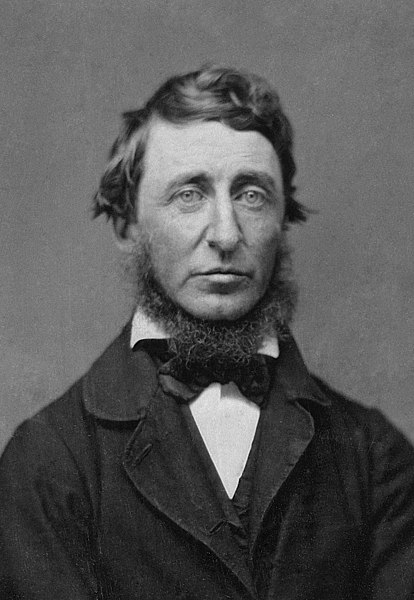 Henry David Thoreau_Wikipedia